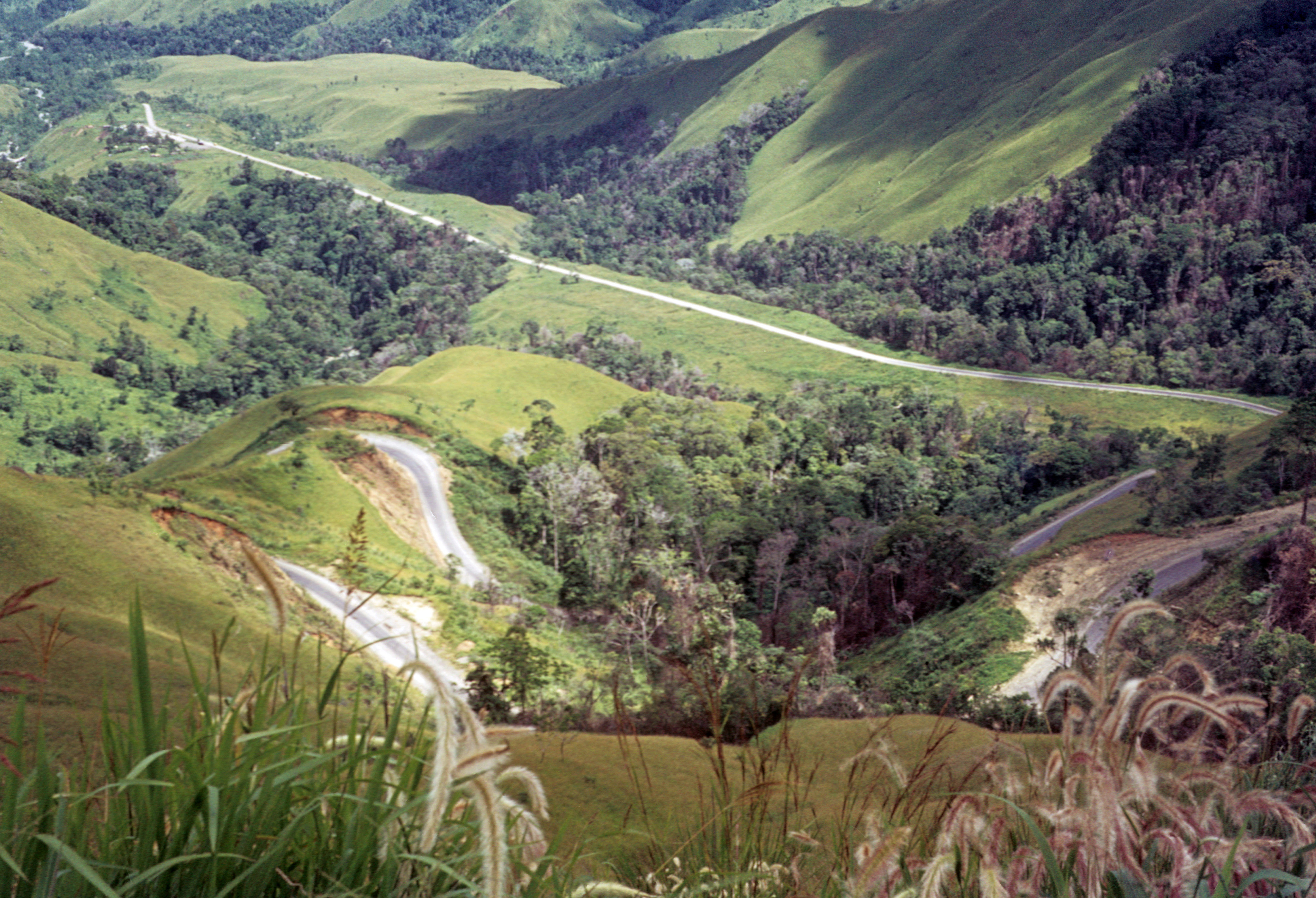 Pictures Of Papua New Guinea