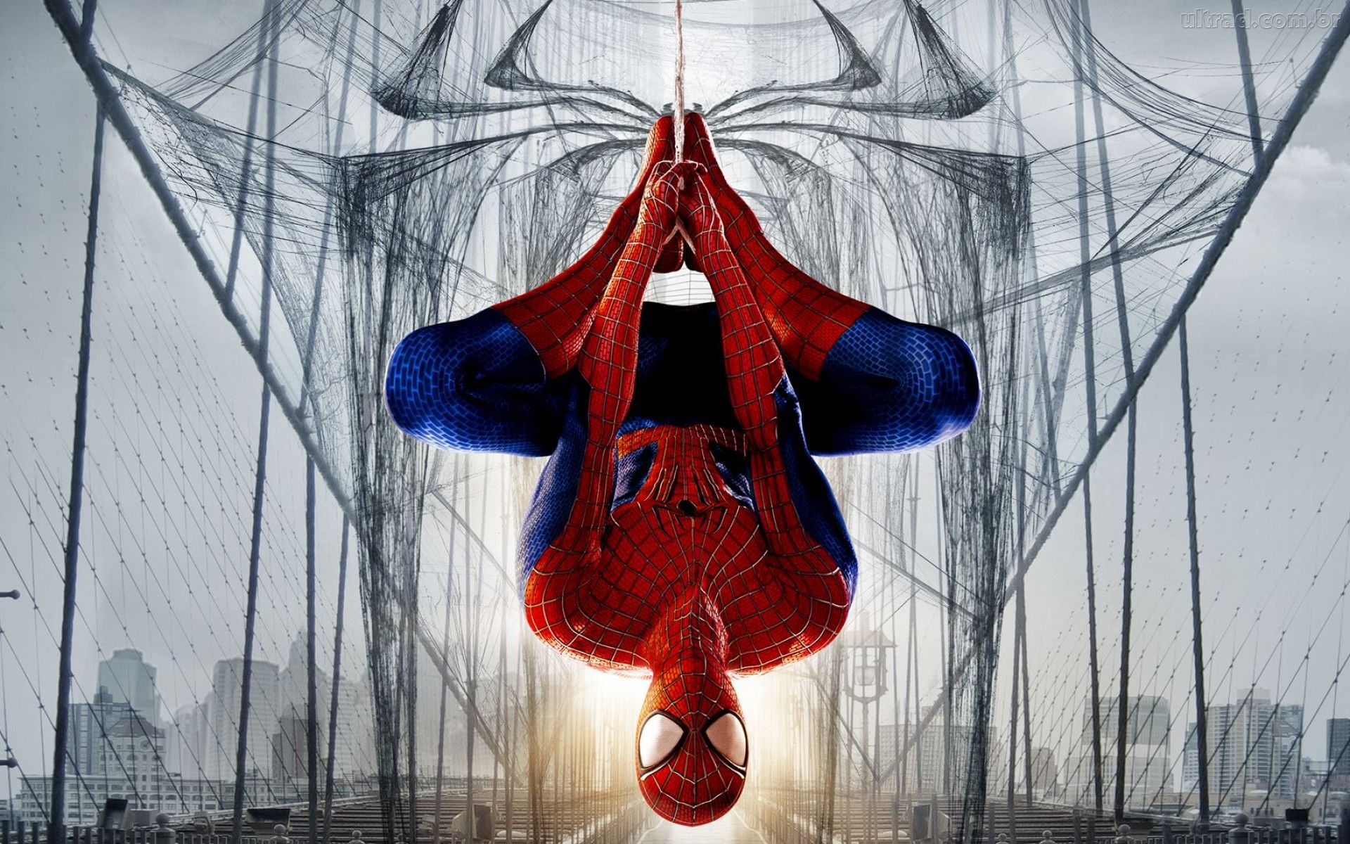 Pictures Of Spider Man