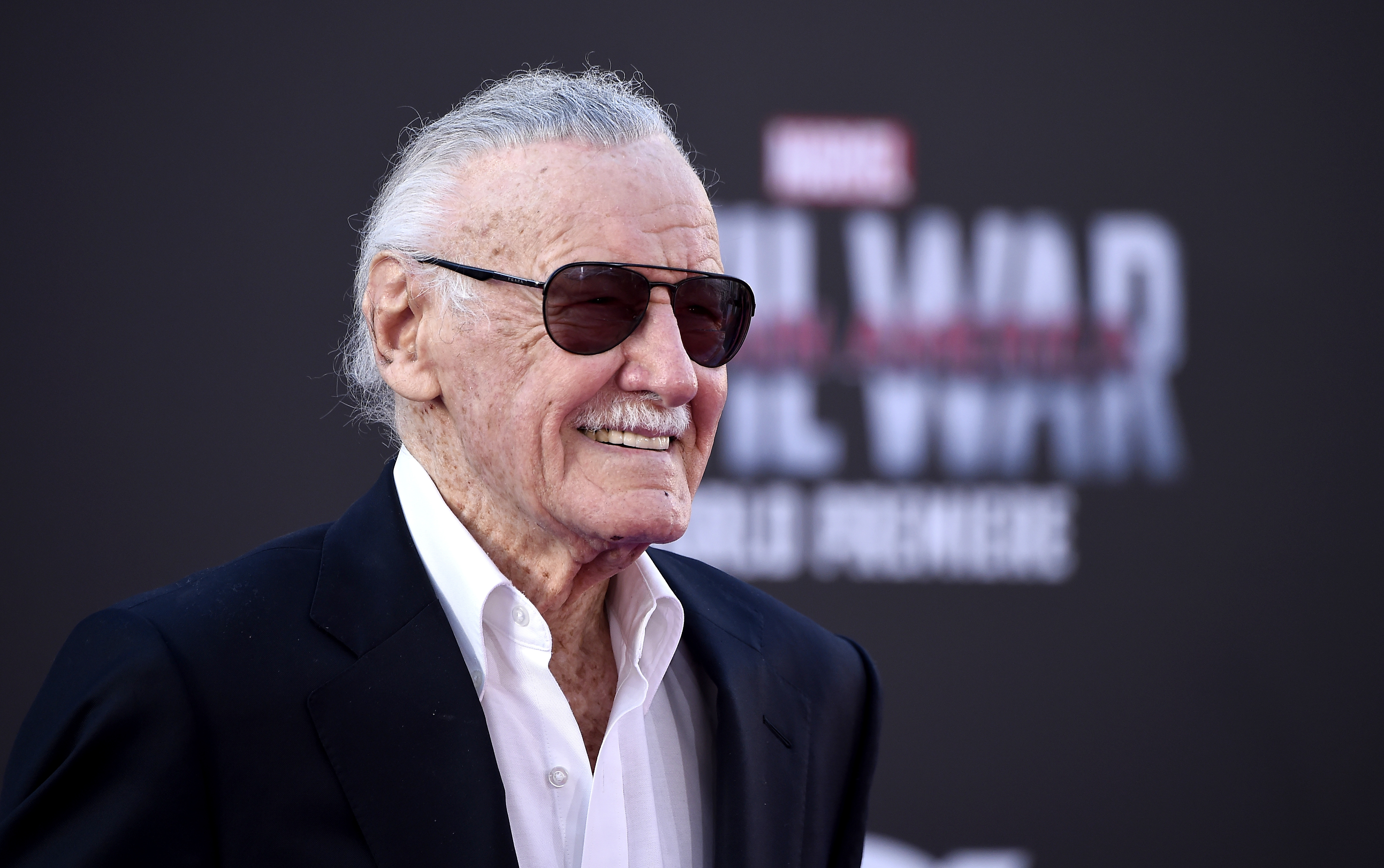 Pictures Of Stan Lee