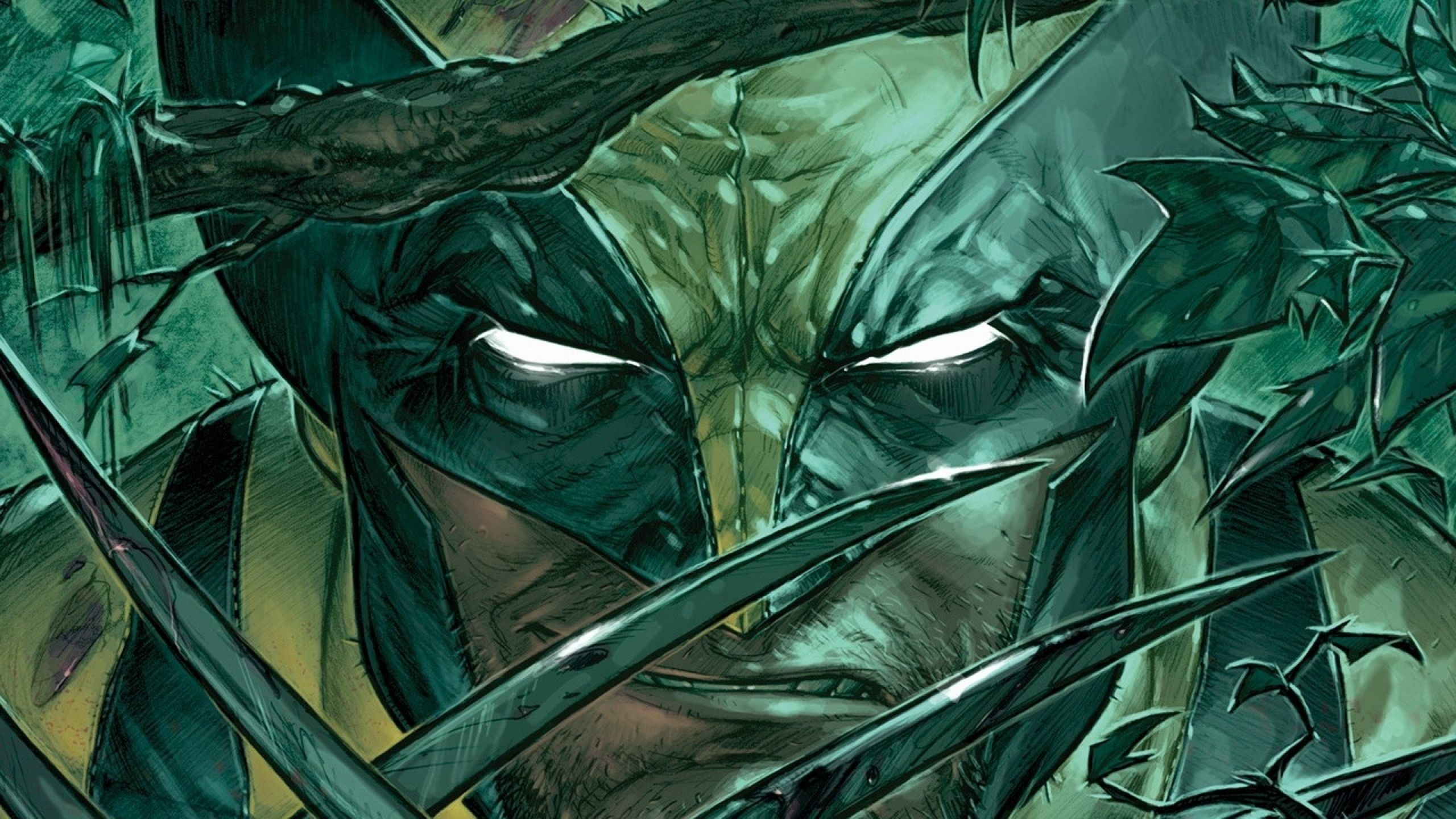 Pictures Of Wolverine