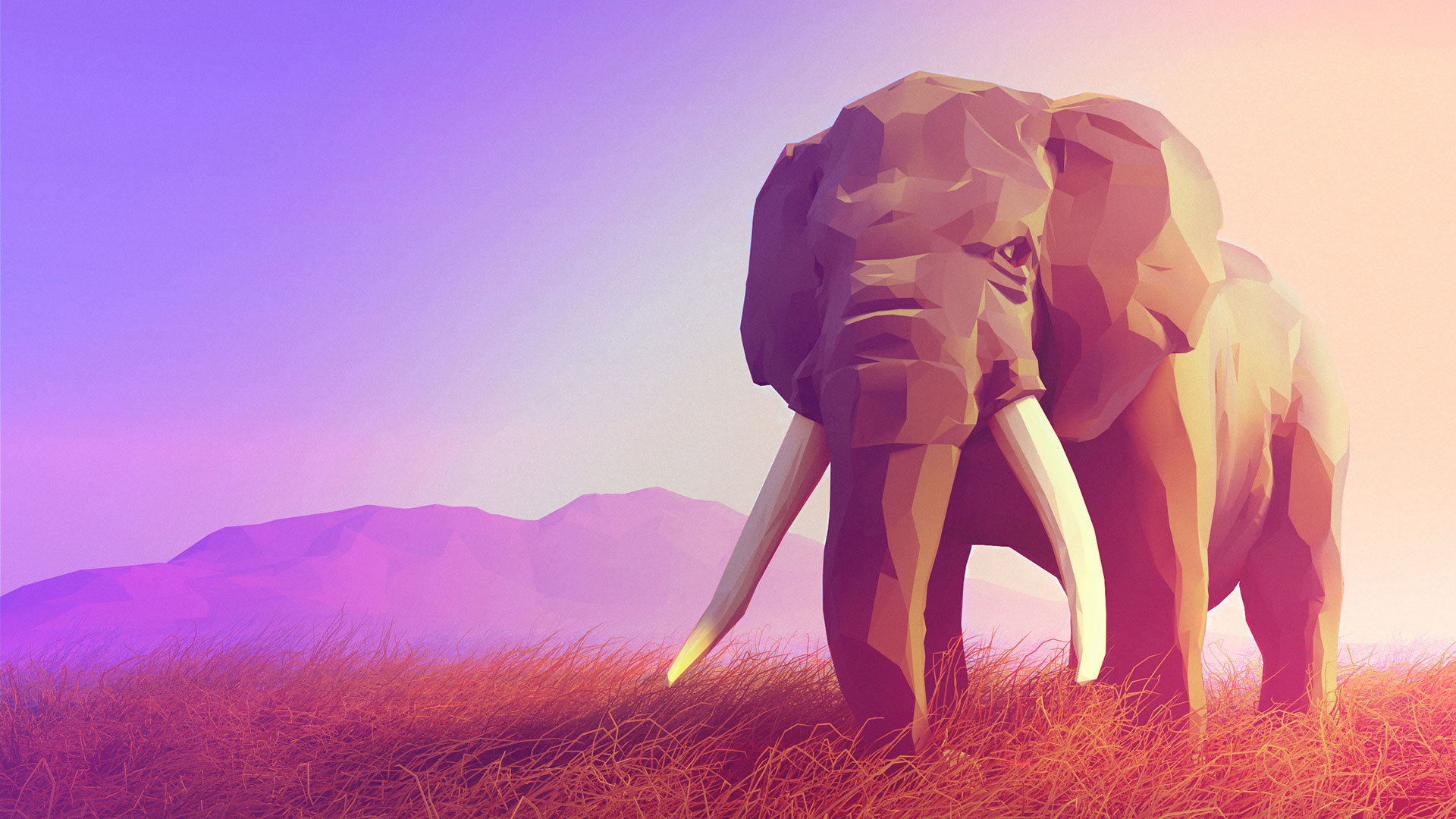 Polygon Elephant Photos