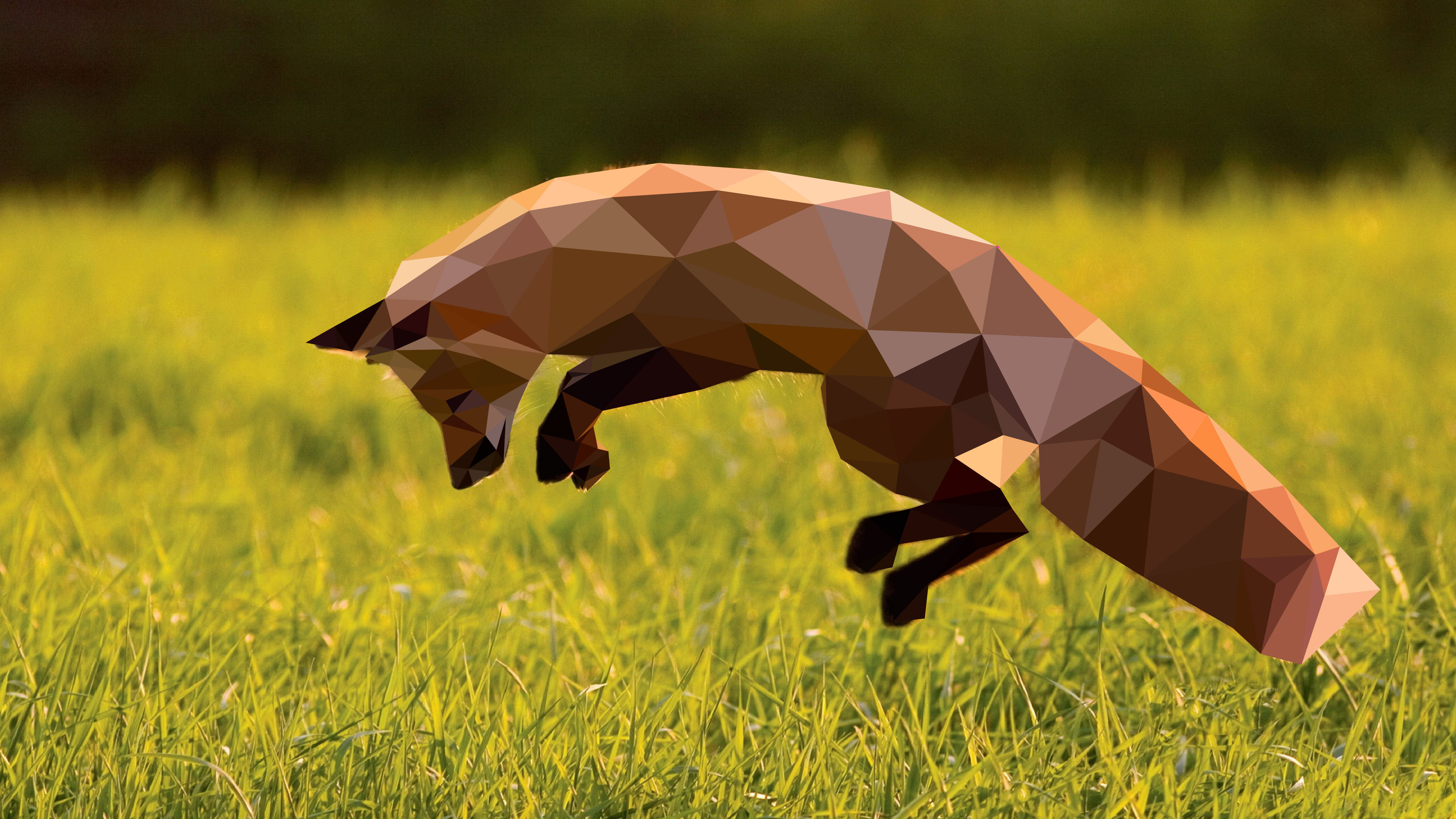 Polygon Fox Wallpaper