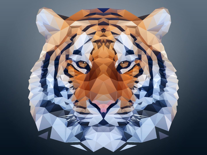 Polygon Tiger Photos