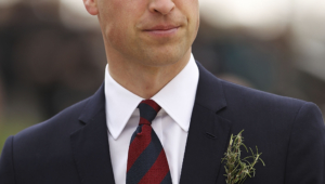 Prince William Android Wallpapers