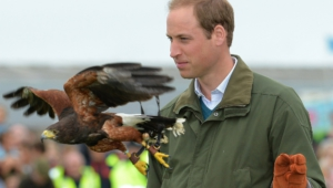 Prince William Wallpapers