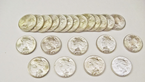 Silver Dollar Images