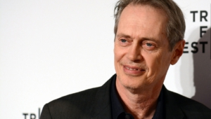 Steve Buscemi Wallpaper For Computer