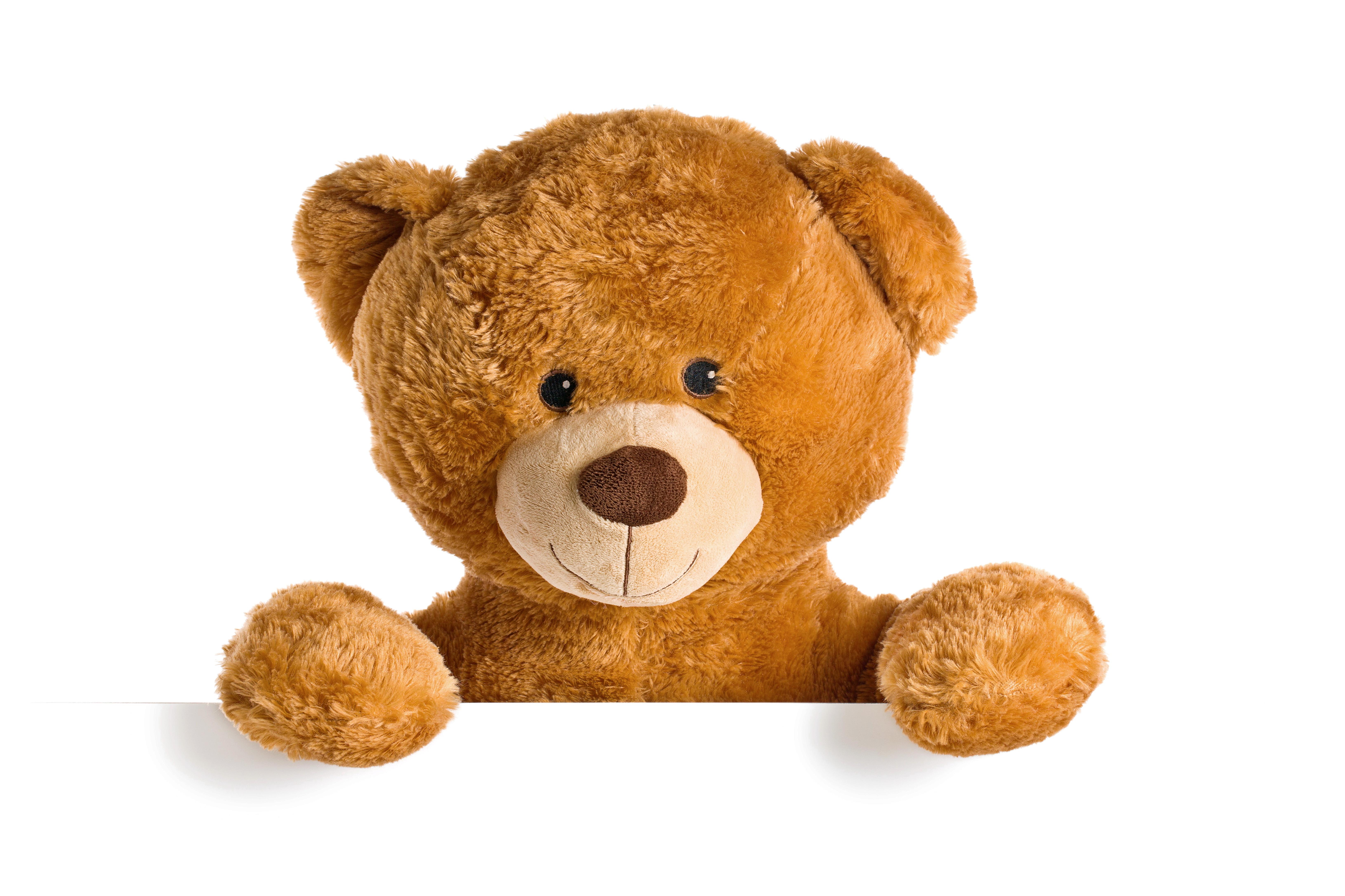 Teddy Bear High Definition Wallpapers