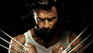 Wolverine Images