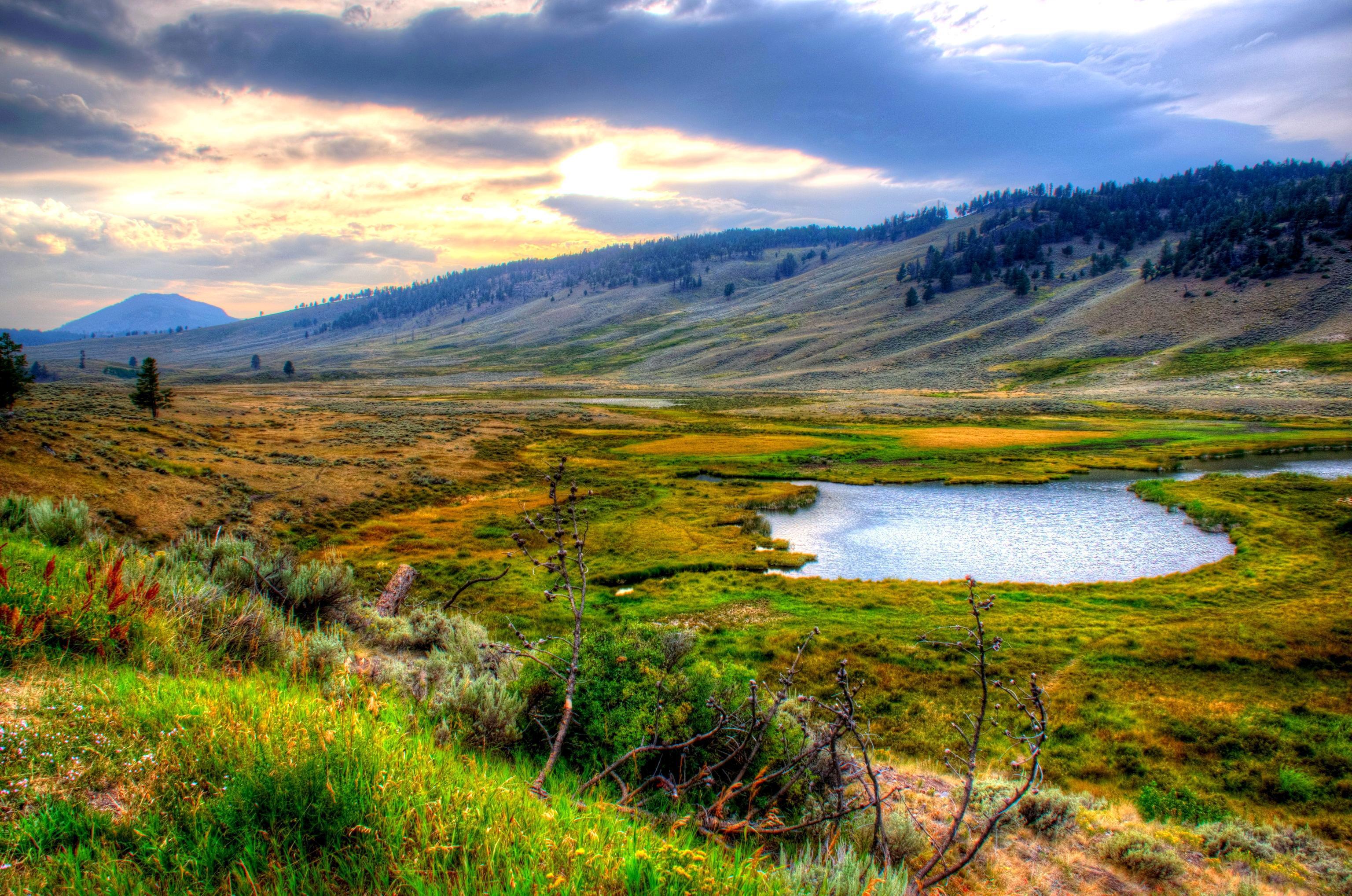 Yellowstone National Park Hd Background
