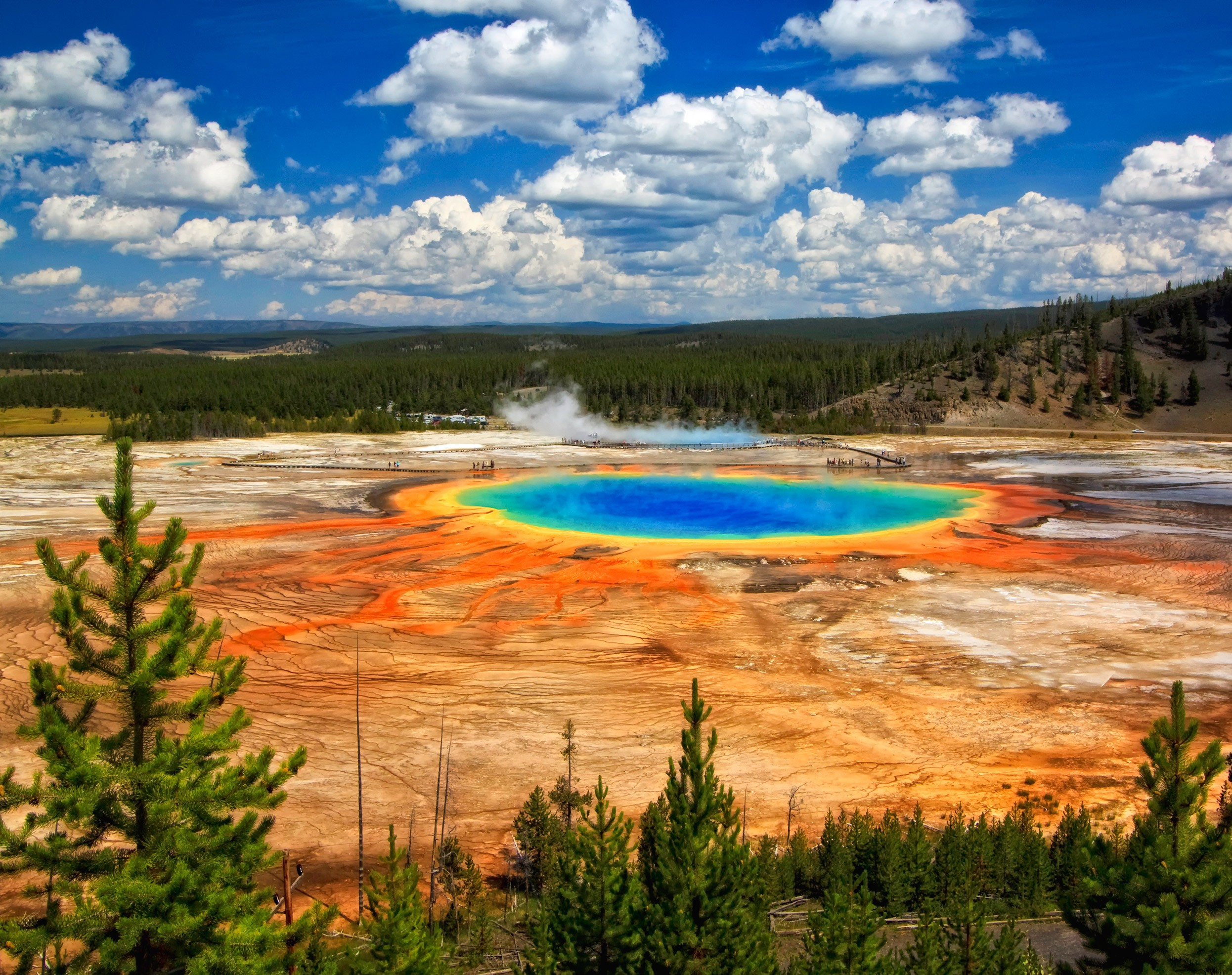 Yellowstone National Park Pictures