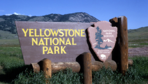 Yellowstone National Park For Desktop
