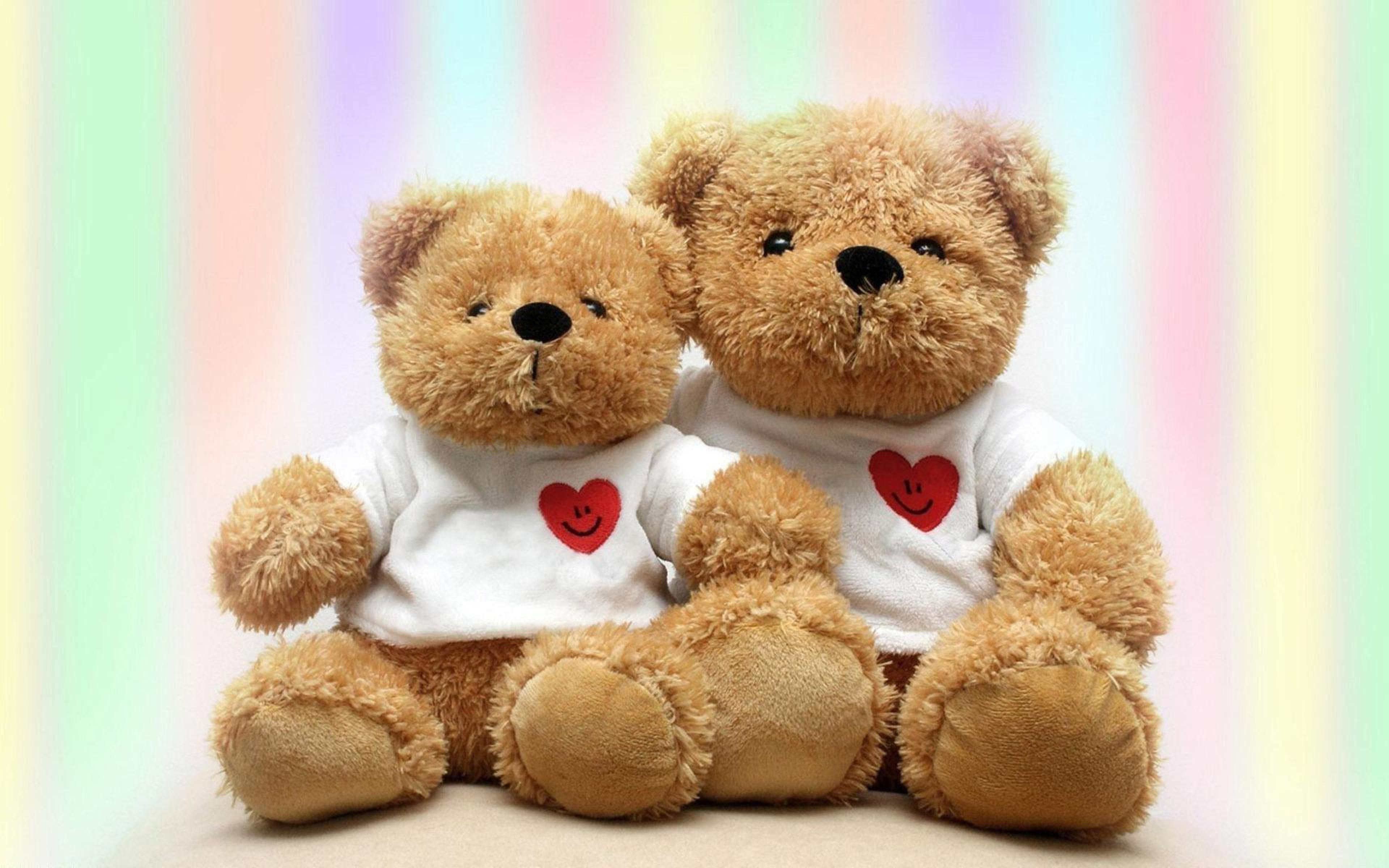 Bear Photography Love Teddy Teddy Bears