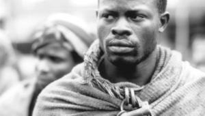 Djimon Hounsou Wallpapers