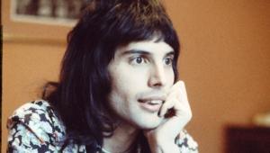 Freddie Mercury Hd Desktop