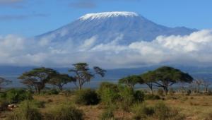 Mountain Kilimanjaro Pictures