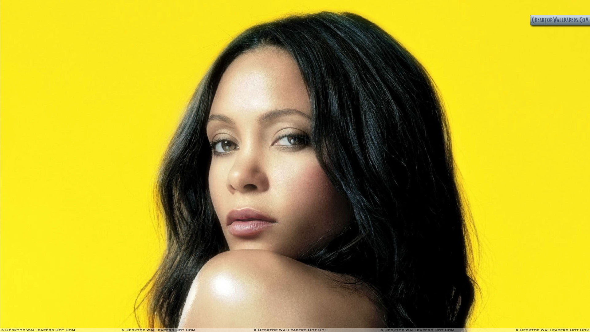 Thandie Newton High Quality Wallpapers