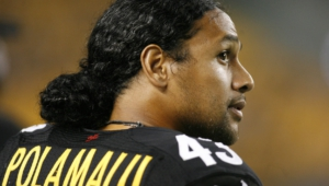 Troy Polamalu Background