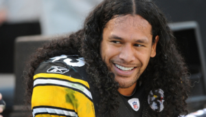Troy Polamalu Hd Desktop
