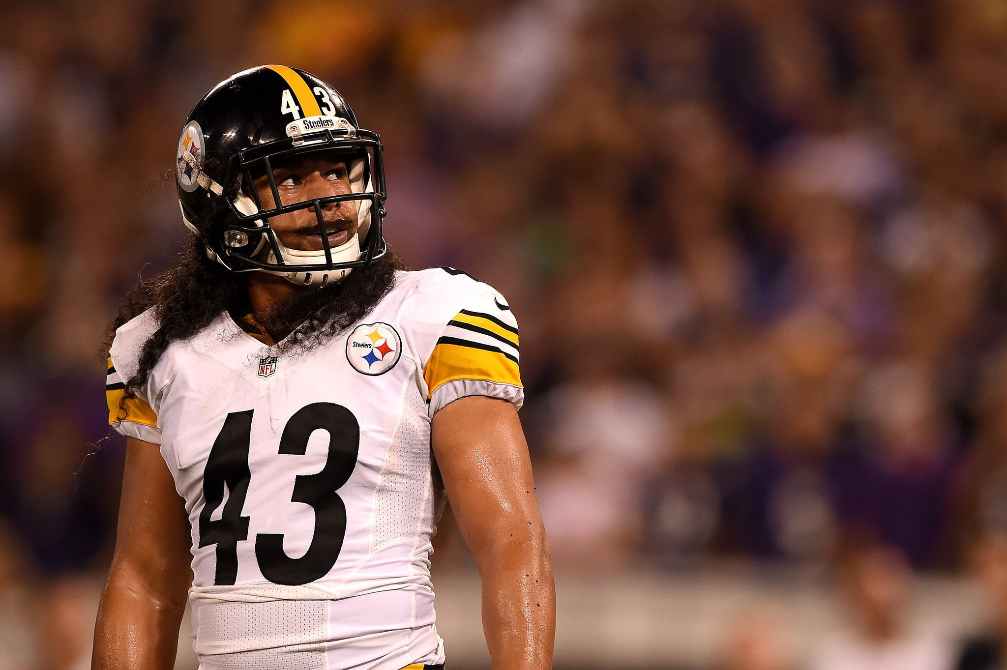 Troy Polamalu Photos