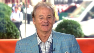 Bill Murray Wallpapers