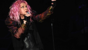 Cyndi Lauper Wallpapers Hd