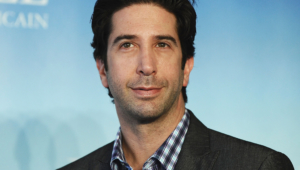 David Schwimmer Pictures