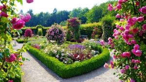 Garden Flower Pictures