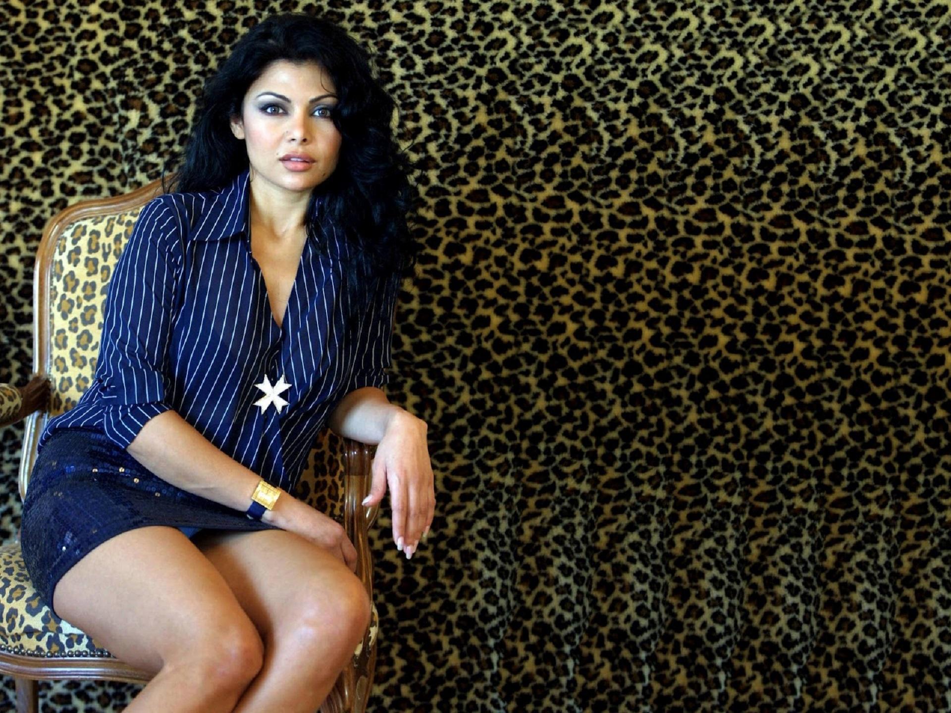 Haifa Wehbe Pictures
