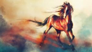Horse Widescreen