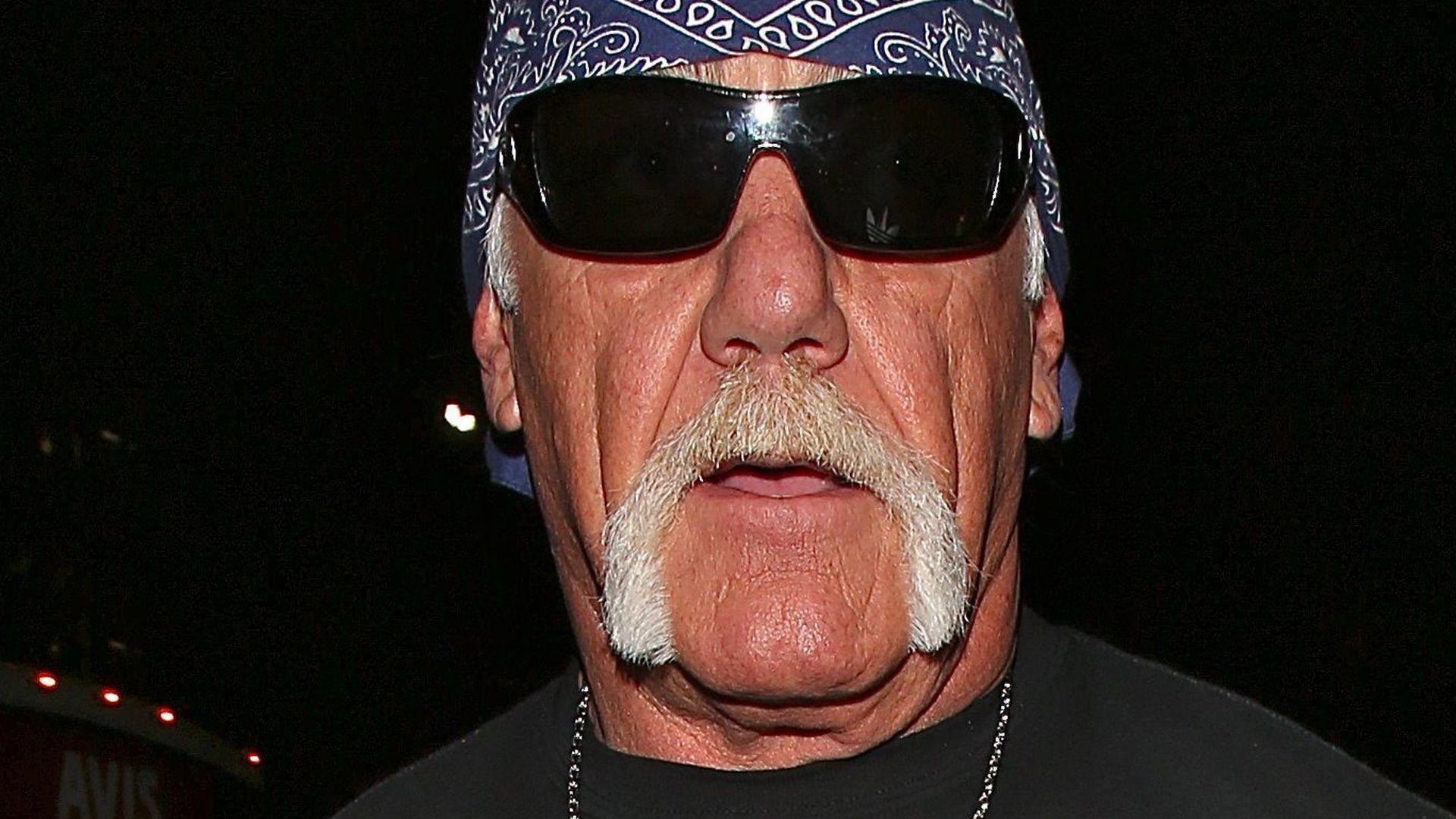 Hulk Hogan Background