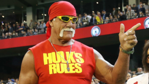Hulk Hogan Computer Wallpaper