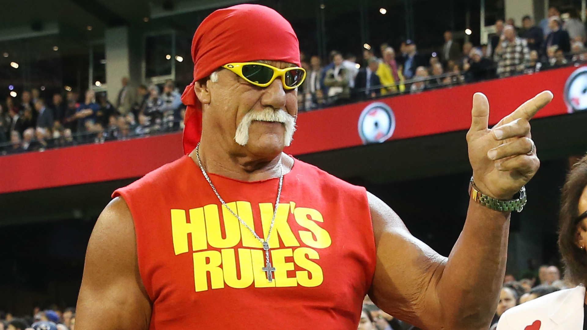 Hulk Hogan Computer Wallpaper