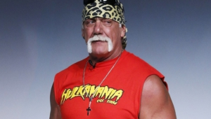 Hulk Hogan Hd Desktop