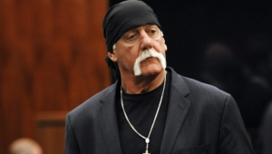 Hulk Hogan For Desktop