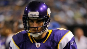 Minnesota Vikings Widescreen