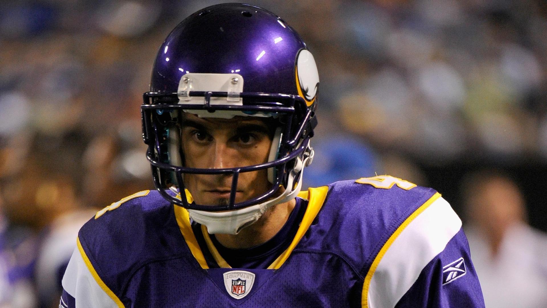 Minnesota Vikings Widescreen