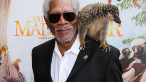 Morgan Freeman For Desktop