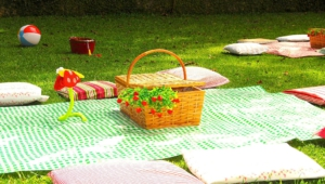Picnic High Definition