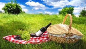 Picnic High Quality Wallpapers