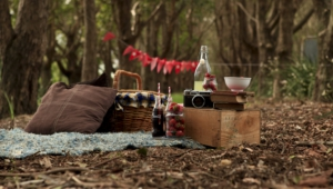 Picnic Wallpapers Hq