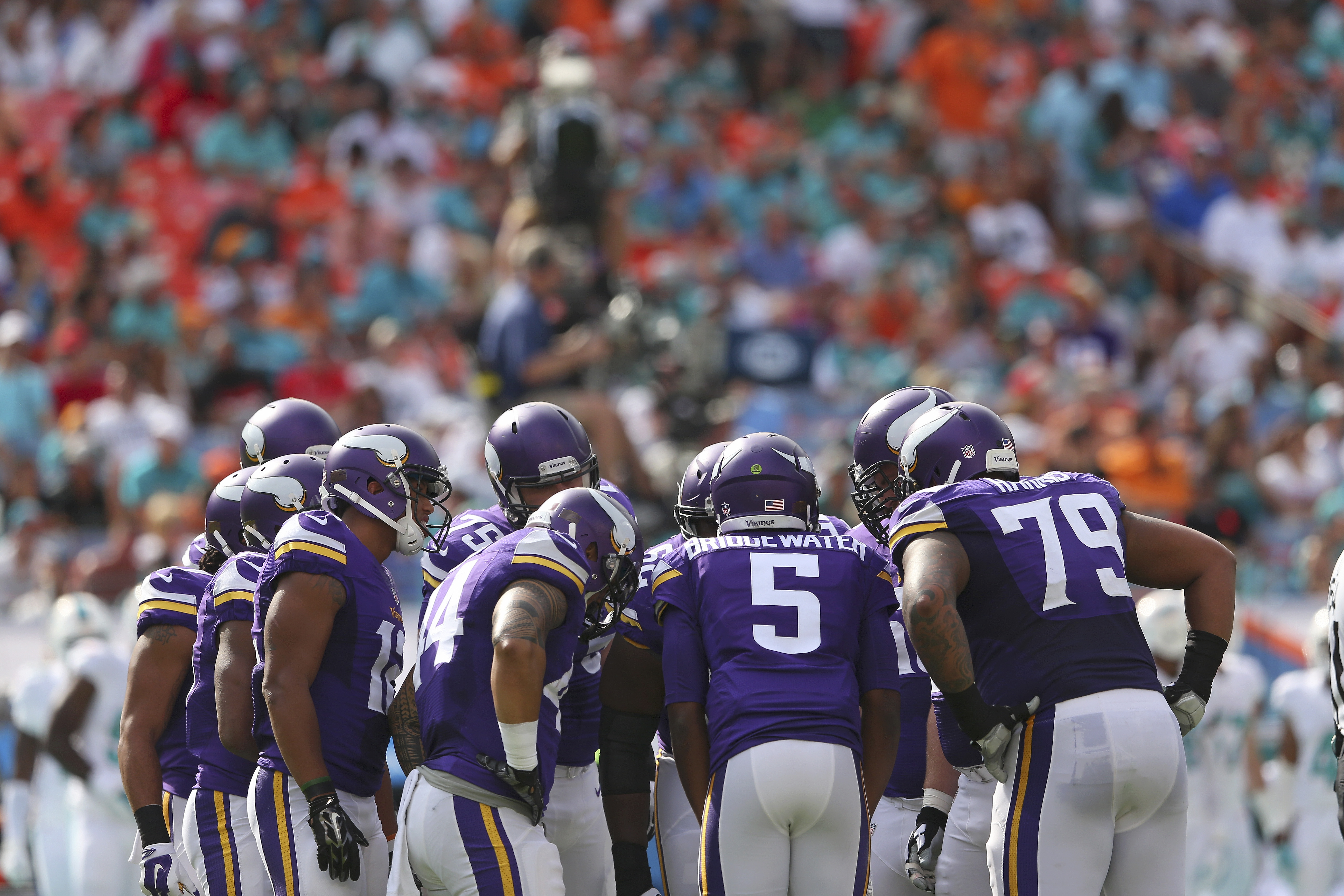 Pictures Of Minnesota Vikings