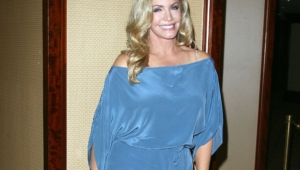 Shannon Tweed Hd Desktop