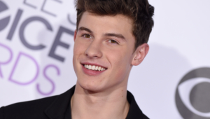 Shawn Mendes 4k