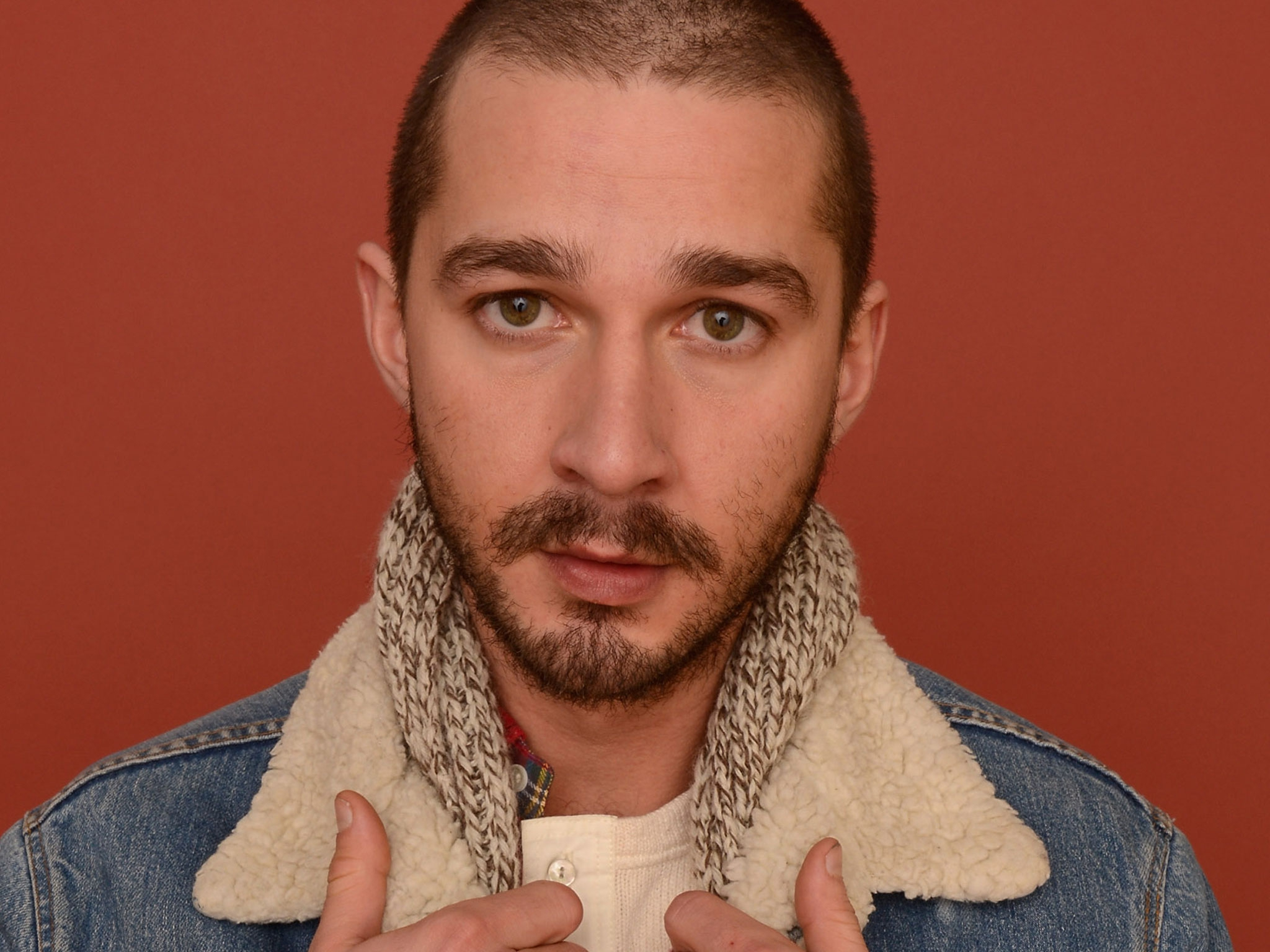 Shia Labeouf High Quality Wallpapers