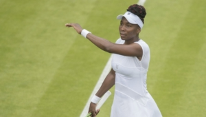 Venus Williams Pictures