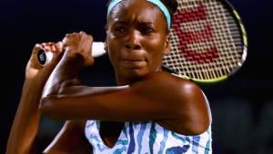 Venus Williams Wallpapers Hq
