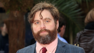 Zach Galifianakis 4k