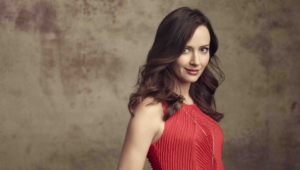 Amy Acker Hd Background