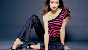 Amy Acker High Quality Wallpapers